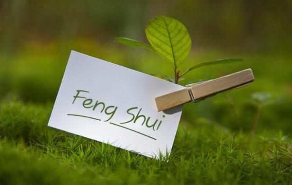 Reise Feng Shui