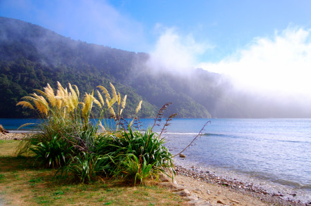 Marlborough Sounds Südinsel