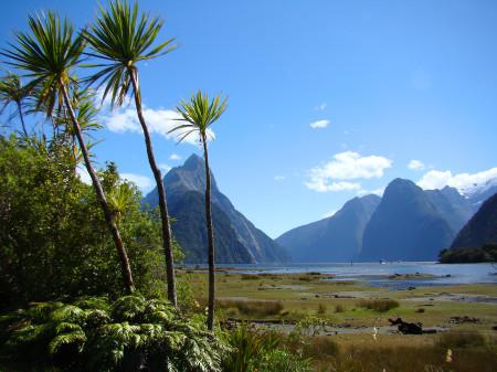 NZ-shutterstock_56530288