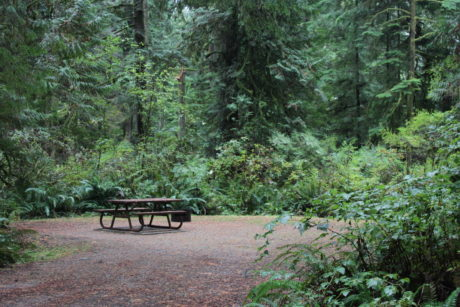 Provincial Park Campground