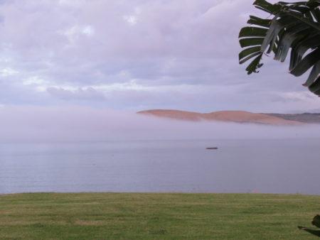 Dünen Nordinsel, Neuseeland