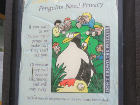 Penguin sign Oamaru