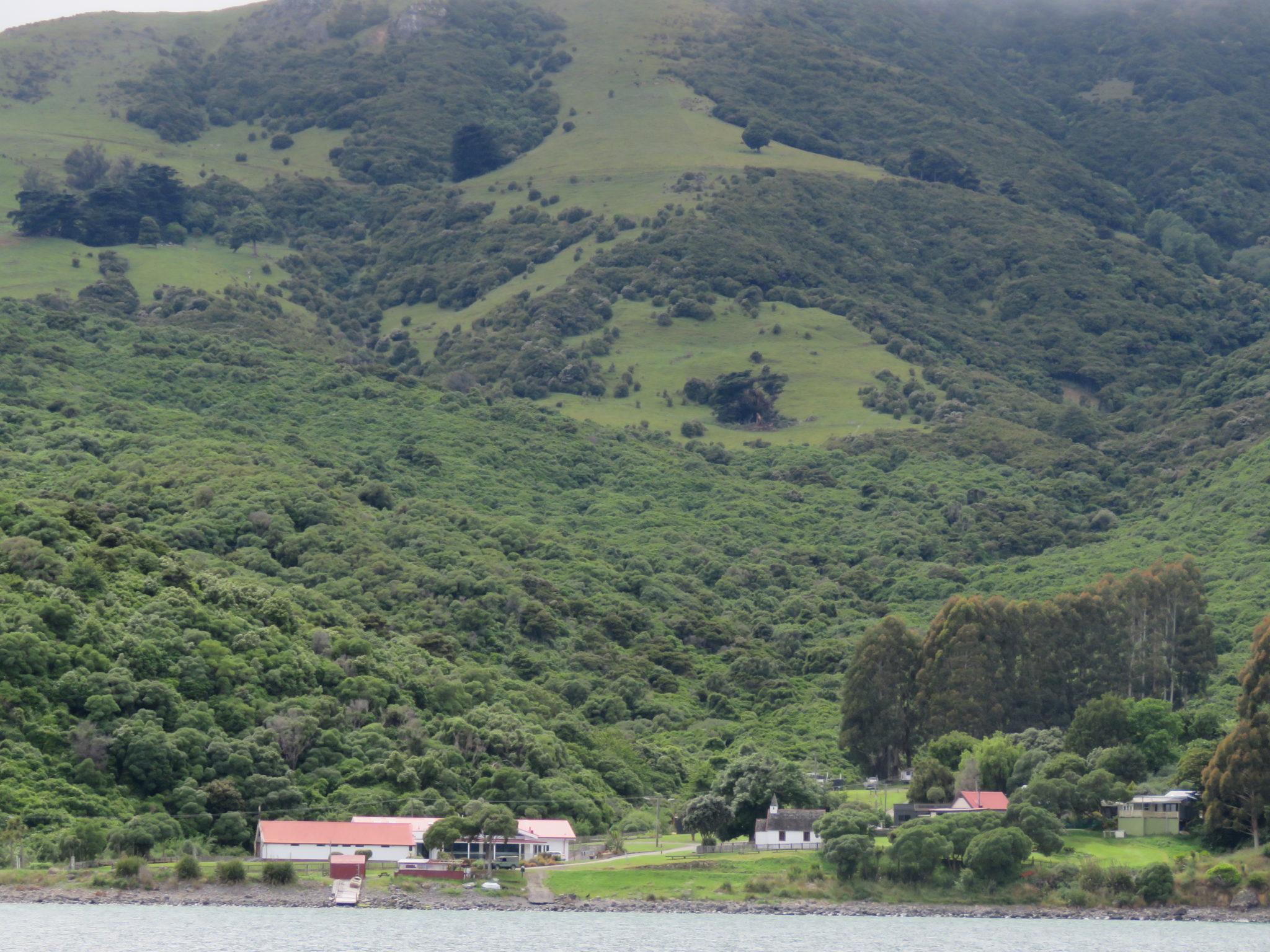 Umgebung von Akaroa