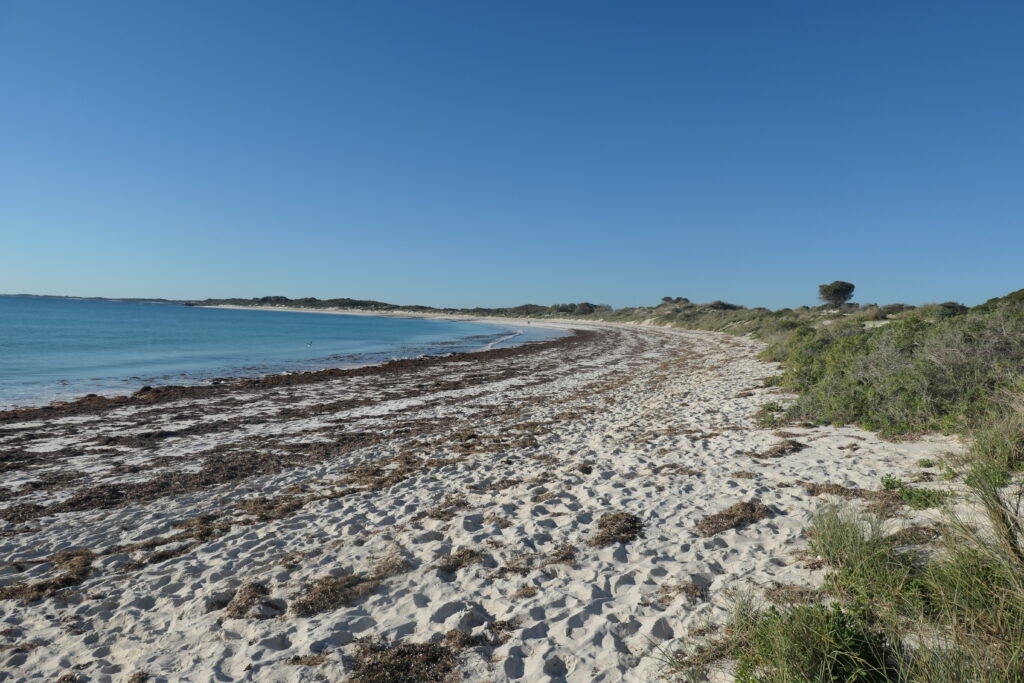 Strand bei Cape Sandy - West Australien
