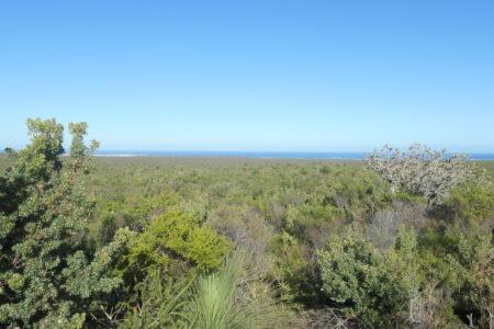 West Australien - Natur pur und Einsamkeit