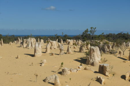 Einsamkeit im Nambung Nationalpark - Pinnacles - West Australien