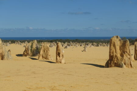 Die Pinnacles im Nambung National Park