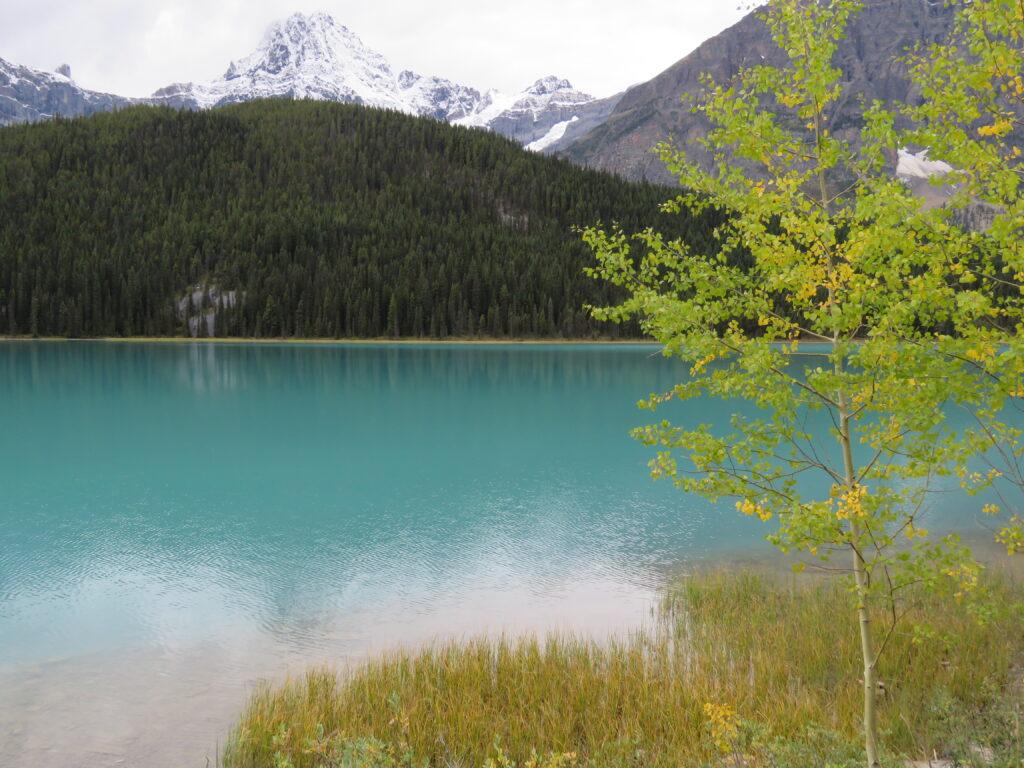 Fahrt durch die Rockies in West Kanada
