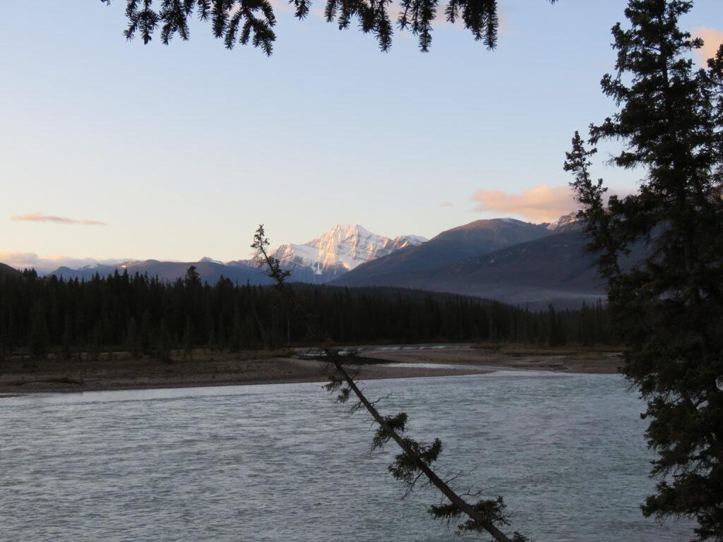 Athabaska River mit Blick auf Mt. Edith - Jasper