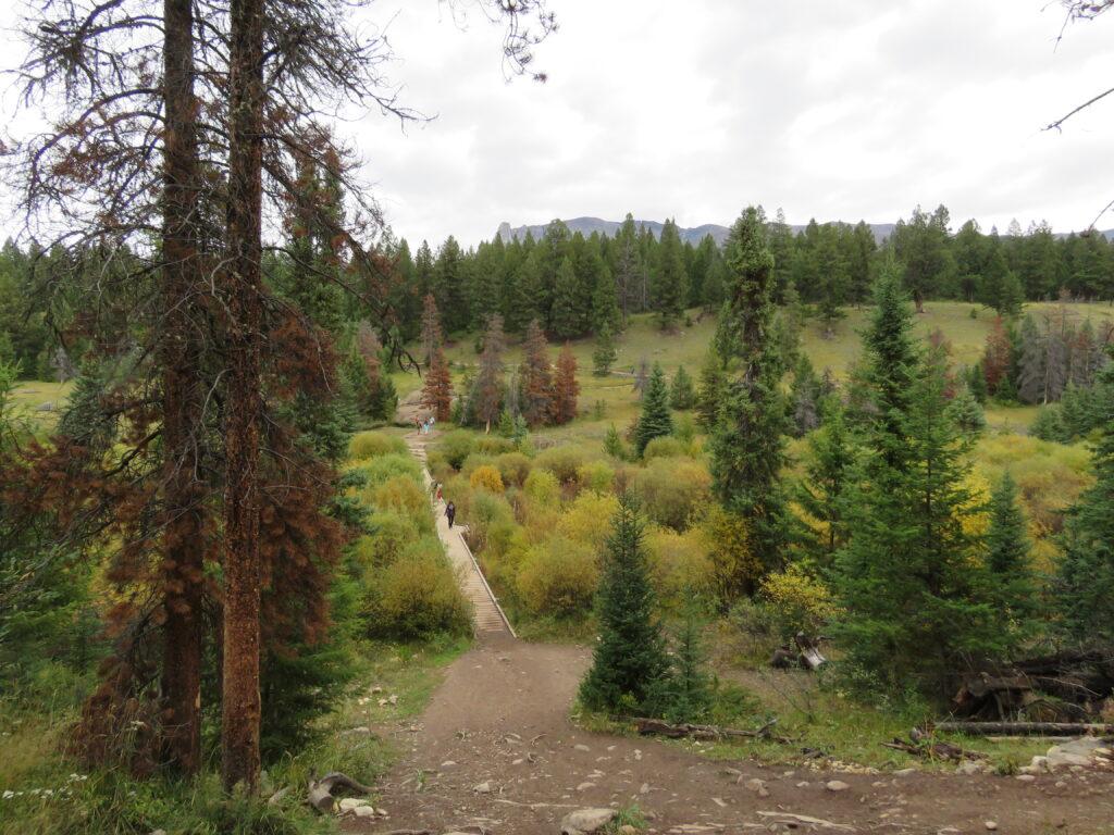"""Jasper - """"Wanderung durch das Tel der fünf Seen"""""""
